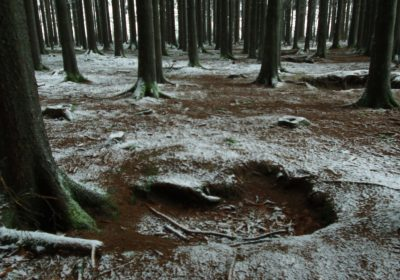 The Real Easy Company Foxholes Bois Jaques – Bastogne