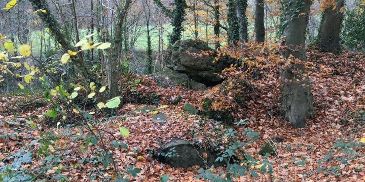 Forgotten WWII Trenches & Bunkers In The Reichswald Forest